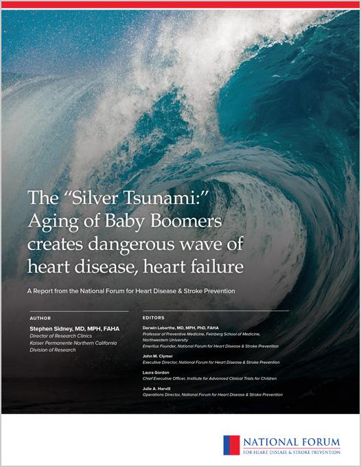 2019 Signature Report - Silver Tsunami